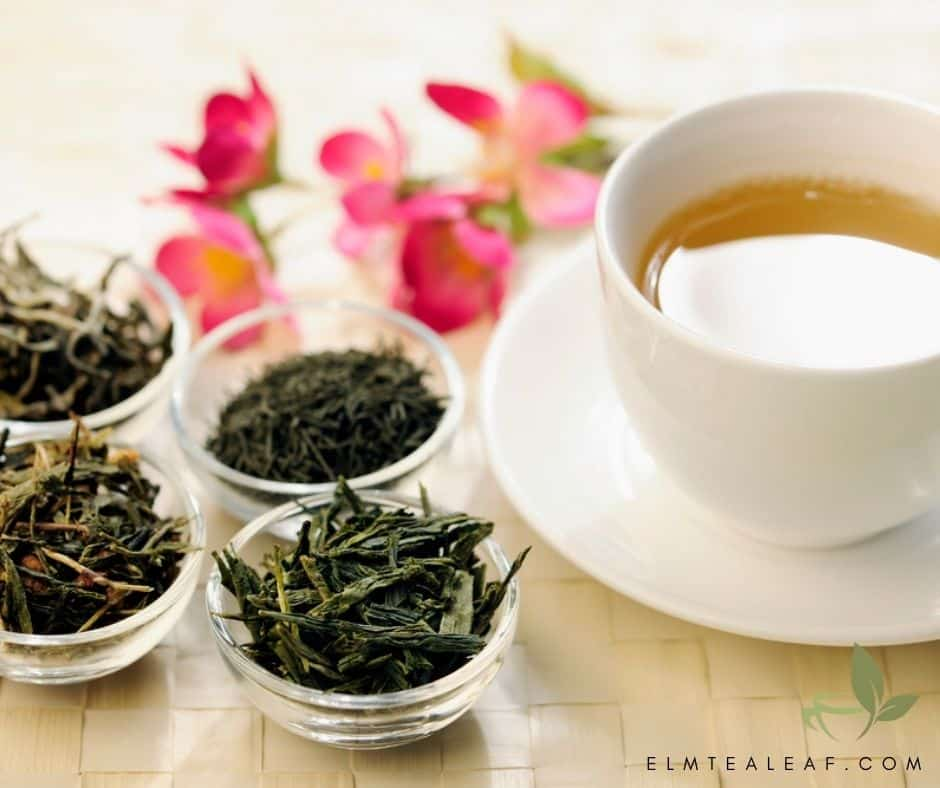 Cup of Green Tea with 4 bowls of loose green tea leaves.