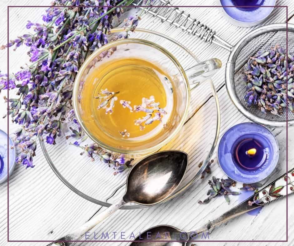 clear cup of lavender tea with buds